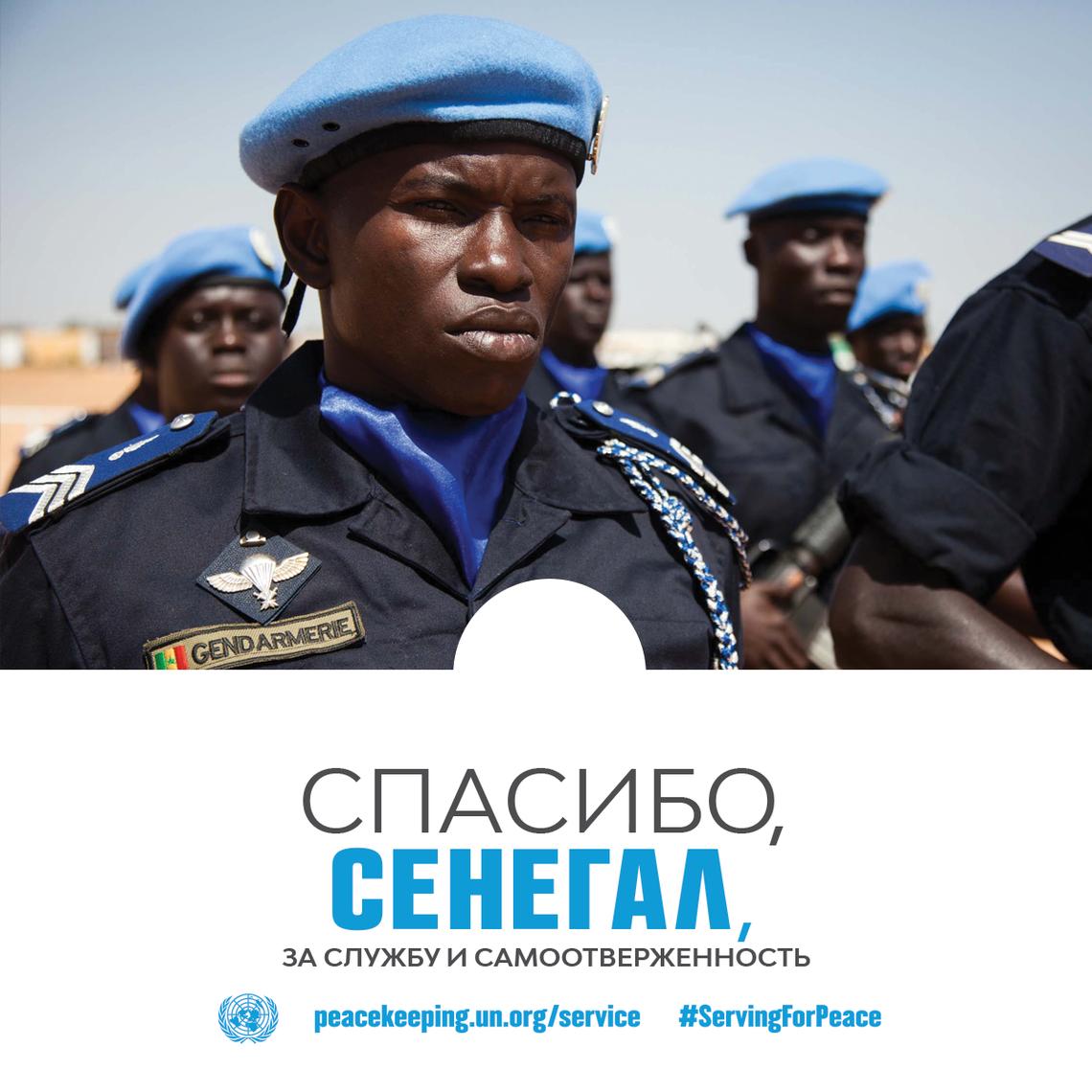 Спасибо, Сенегал, за службу и самоотверженность