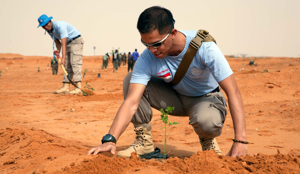 UNAMID staff (civilian, military and police) commemorate the World Environment Day planting trees at the UNAMID headquarters in El Fasher.