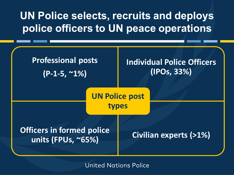 UN Police post types